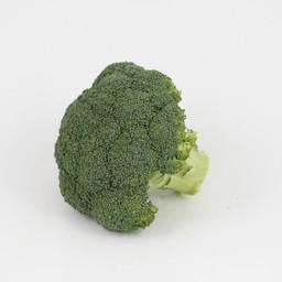 broccoli (9 planten)