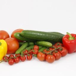 tomaten, paprika en komkommer (9 planten)