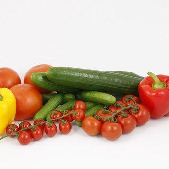 combipakket tomaten komkommer paprika en peper planten