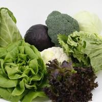 Groentezaden en kiemgroenten