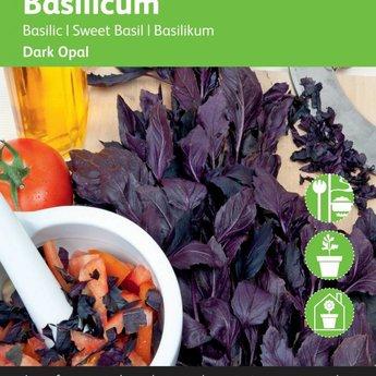 Rode basilicum kruidenzaden