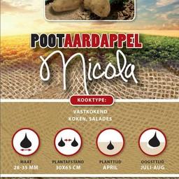 Pootaardappel Nicola 1 Kg