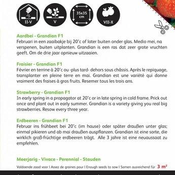 Grandian aardbeien zaden