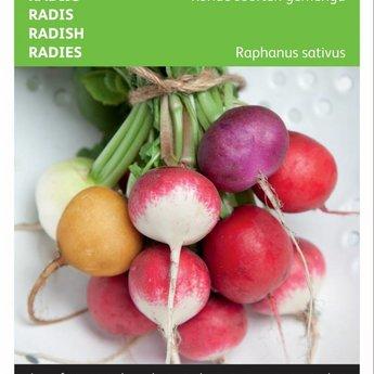 Ronde radijs groentezaden