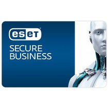 Secure Business (bundel)
