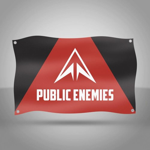 Public Enemies - Original Flag