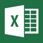 Excel ONLINE TRAINING EXCEL 2013 BASIS CURSUS