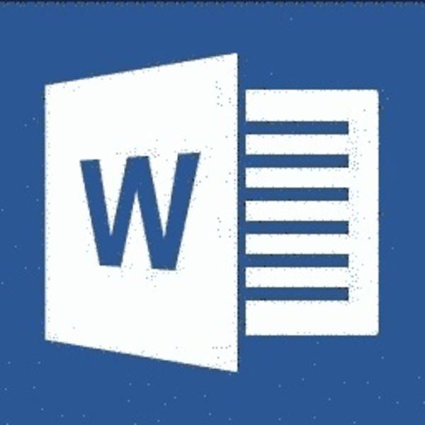 Word ONLINE TRAINING WORD 2013 BASIS/GEVORDERD/EXPERT CURSUSPAKKET INCL. CURSUSBOEK