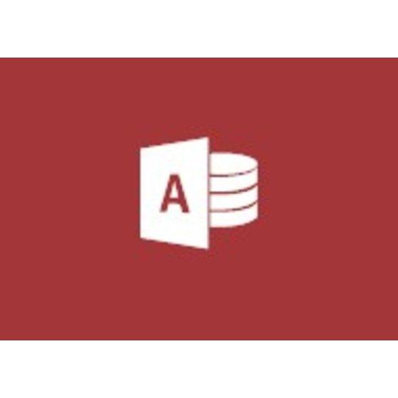 Incompany Microsoft Access