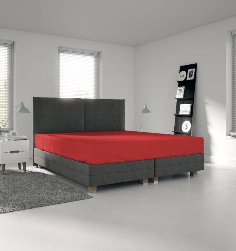 Nightlife Jersey Bettlaken / Spannbetttuch 150 gramm Rot