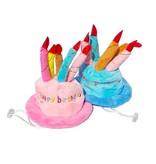 Verjaardagshoedje Happy Birthday