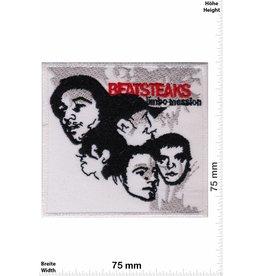 Beatsteaks Beatsteaks  -Alternative-Rock-Punk-Band