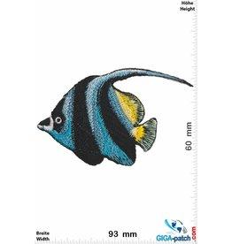 Fisch Fisch - Meeresfisch - blau schwarz