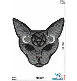 Pentagramm Pentagram Cat