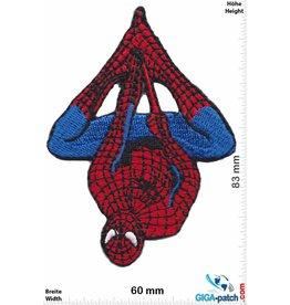 Spider-Man Spidermann - hang around