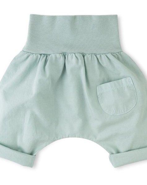 1+ in the family TEO bermuda pants aqua