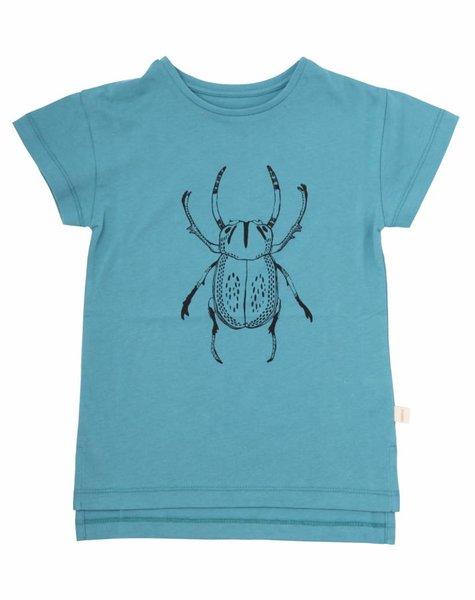 Iglo+Indi Beetle top
