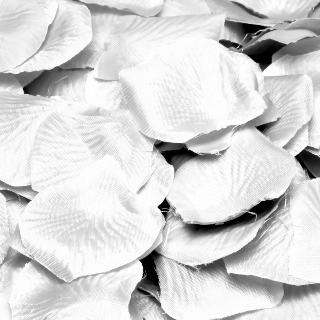 Feestfestijn Rozenblaadjes Wit, 144 stuks