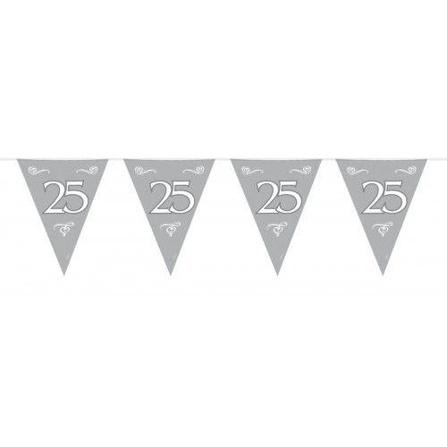 Feestfestijn Vlaggenlijn Zilver 25 jaar - 10 meter