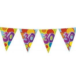 Feestfestijn Vlaggenlijn 30 jaar
