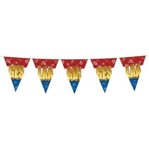 Feestfestijn Vlaggenlijn Geslaagd 6 meter
