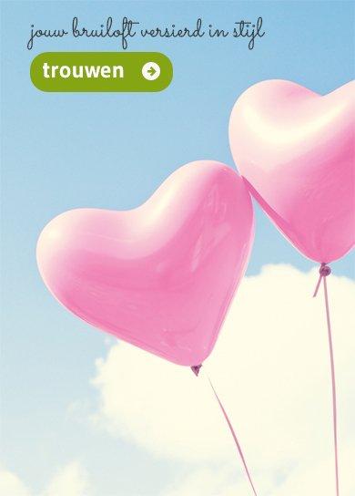 geslaagd slingers en ballonnen kopen
