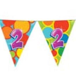 Feestfestijn Vlaggenlijn 2 jaar