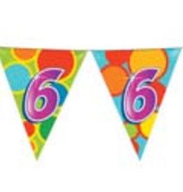 Feestfestijn Vlaggenlijn 6 jaar