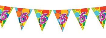 Feestfestijn Vlaggenlijn 6 jaar - 10 meter