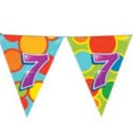 Feestfestijn Vlaggenlijn 7 jaar
