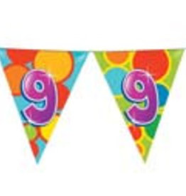 Feestfestijn Vlaggenlijn 9 jaar