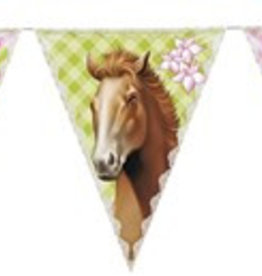Feestfestijn Vlaggenlijn Paarden roze/groen 6 meter