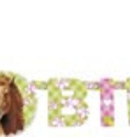 Feestfestijn Letterslinger Paarden Happy Birthday