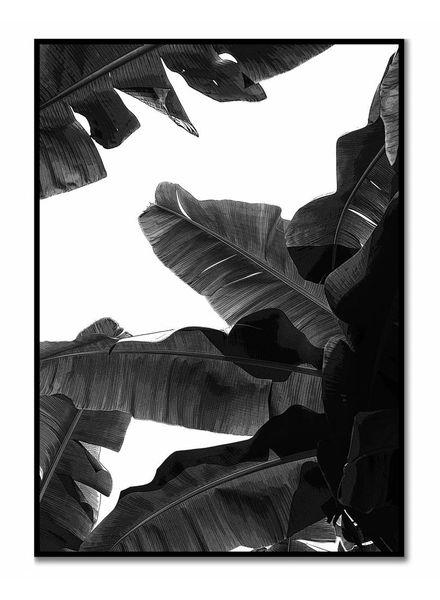livstil Tropical Black & White