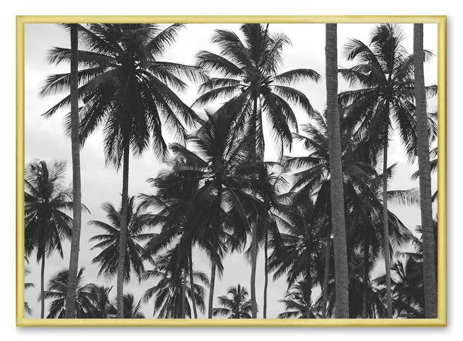 livstil LA Palms 3