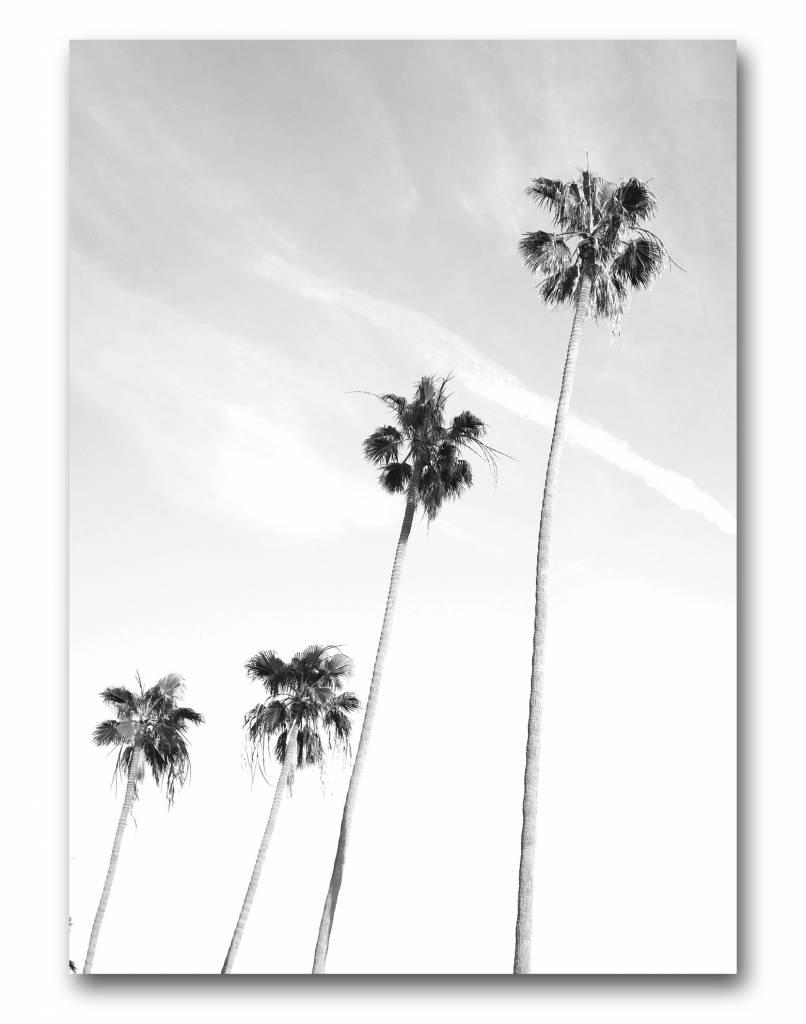 livstil LA Palms 4