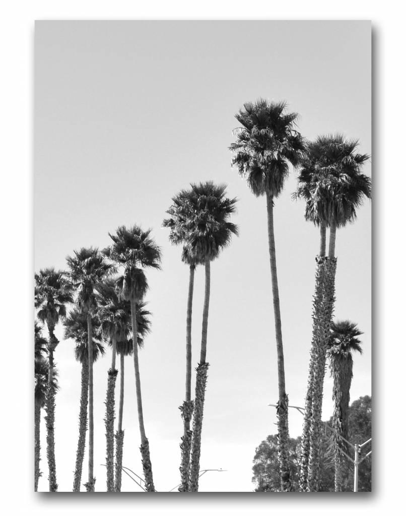 livstil LA Palms 5