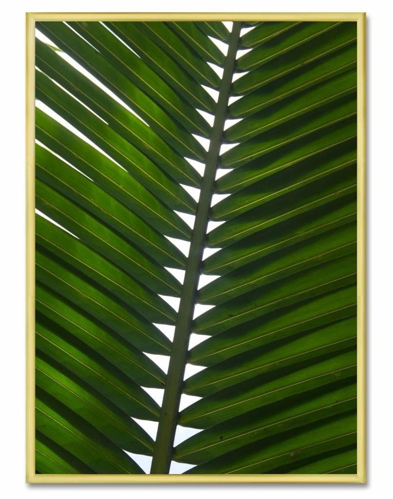 livstil Palm Leaf