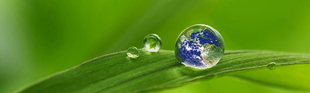 Das nu:ju Gesichtsreinigungstuch und die Nachhaltigkeit