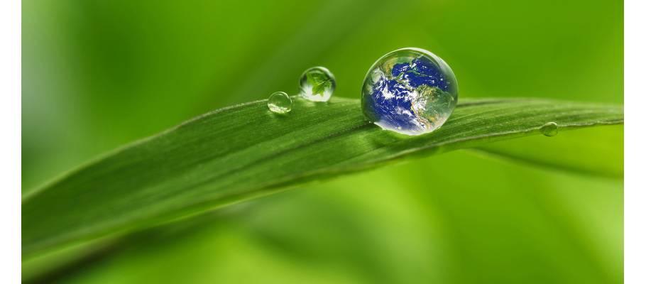 Wieso ist Evolon® umweltfreundlich?