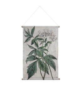 Hk Living HK living Botanisch schoolplaat canvas Botanisch L