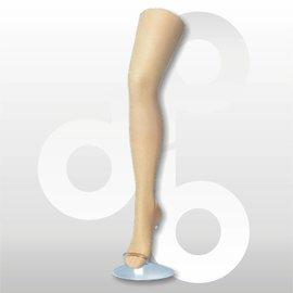 Kousenpresentatie damesbeen met teen H72 cm