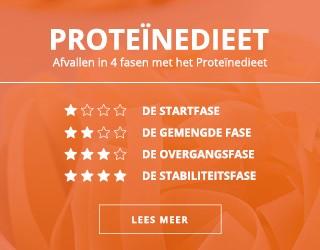 fases proteinedieet