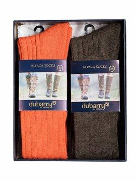 Dubarry Lissadell Alpaca Sokken in Gift Box