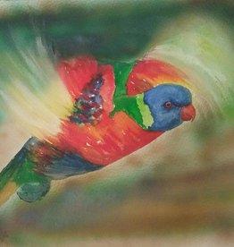 Regenbooglori in vlucht
