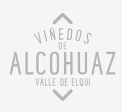 Vinedos de Alcohuaz