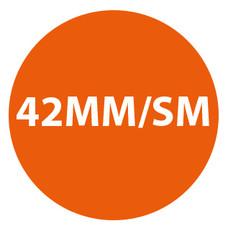Apple watch 42MM-SM