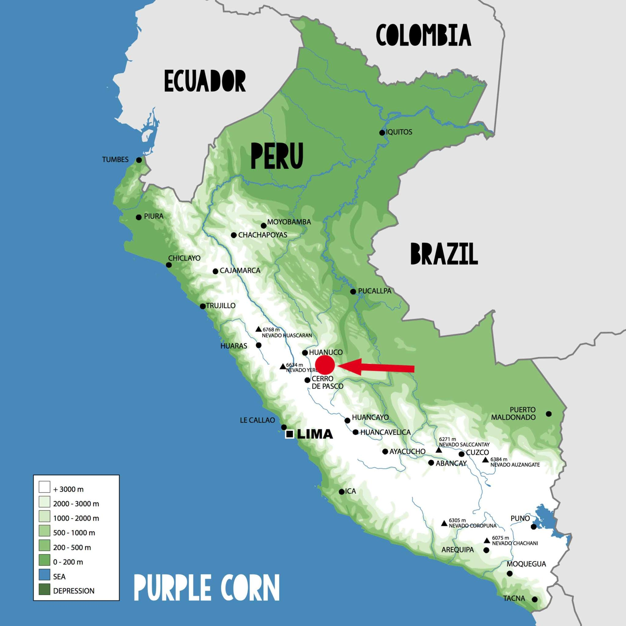 Purple Corn Ursprung