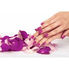 1 Daagse opleiding gellak met gratis manicure €200,00 incl.BTW