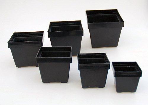 Macetas cuadradas negras 6 x 6 x 52 cm Uhlig Kakteen Ms que